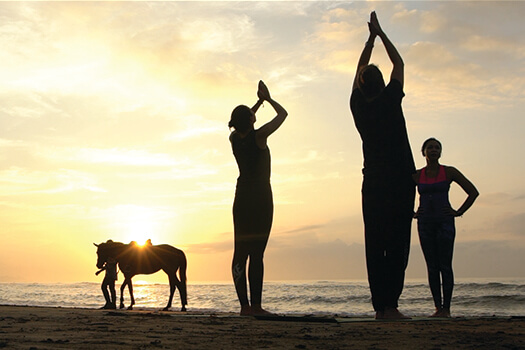http://www.balihorseriding.net/service/sun-salutation-ride
